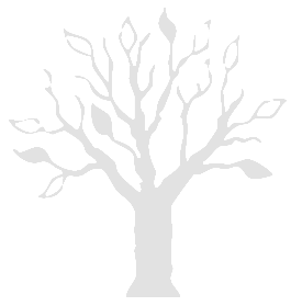 logo-tree-watermark | Specialised Tree Lopping: specialisedtreelopping.com.au/?attachment_id=57